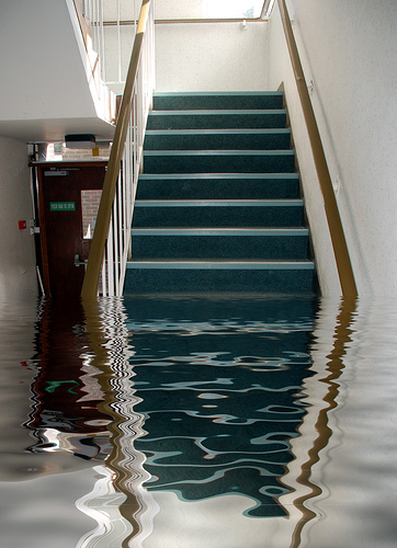 Water Damage and Flood Repairs